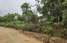 LP63060049-Land for sale on the island, beautiful land, natural view, next to the sea, Koh Phangan, Surat Thani province.